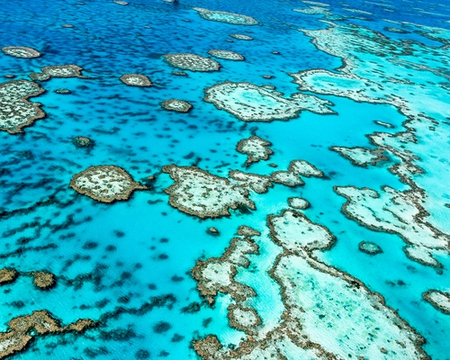 'No action on anything': Australia increasingly isolated as US and others ramp up climate ambition