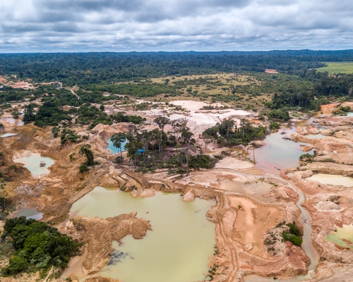 CSSN Position Paper - Dismantling the Environmental State: Actors, Strategies and Discourses Behind the Bolsonaro Attack on the National Environmental Regulation
